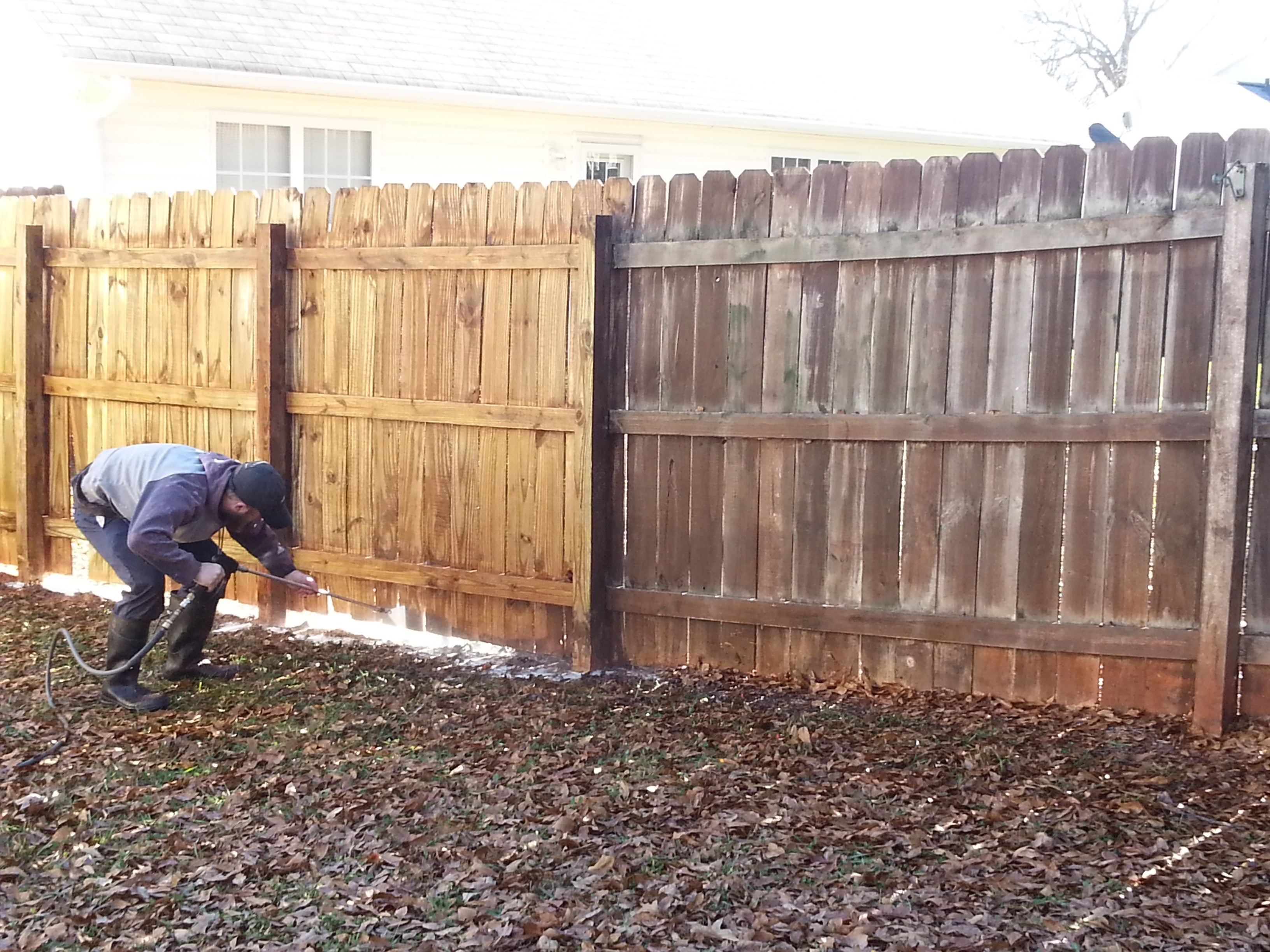 Before and after pressuring washing wooden privacy fence.